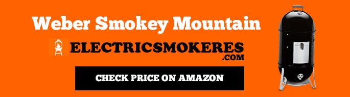 Weber Smokey Mountain Best Charcoal Smokers for Beginners